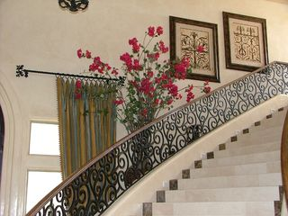 11' Bougainvillea next to a grand staircase